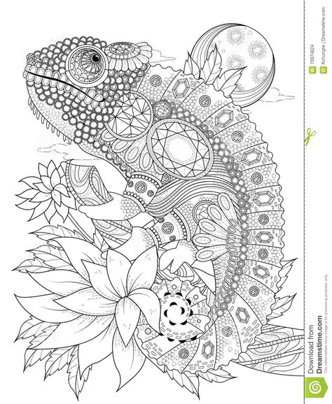 coloring pages for adults chameleon chameleonb adult coloring page stock illustration image
