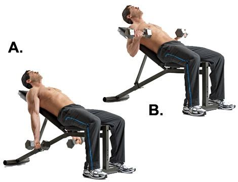 curl incline comment muscler les biceps