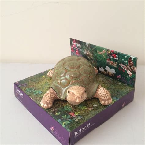 tortoise home decor tortoise home decor tortoise garden ornament garden ftempo