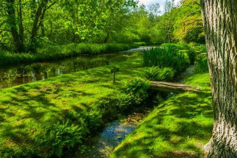 fairhaven garden trust norfolk travel guide