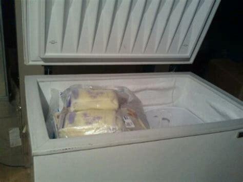 Storing Breast Milk In Freezer Door by Breast Milk Storage Real Time Freezer Monitoring