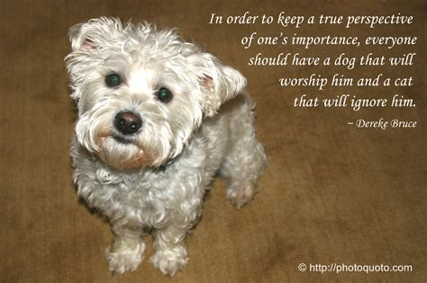 the lincoln chronicles puppy wisdom for happy living books westie photo quoto