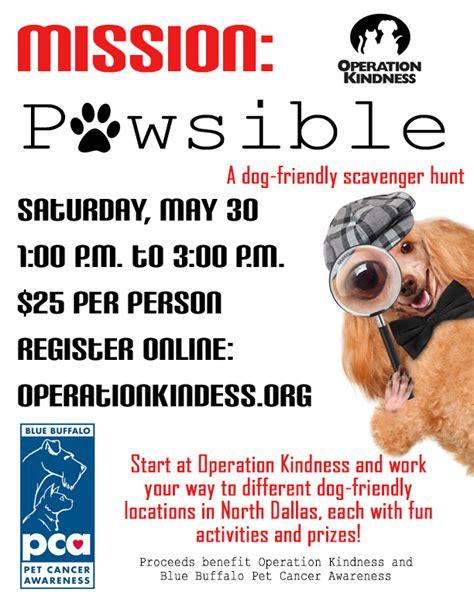 operation kindness dogs operation kindness