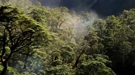 beleza da natureza fotos e imagens natureza hd 1080p youtube