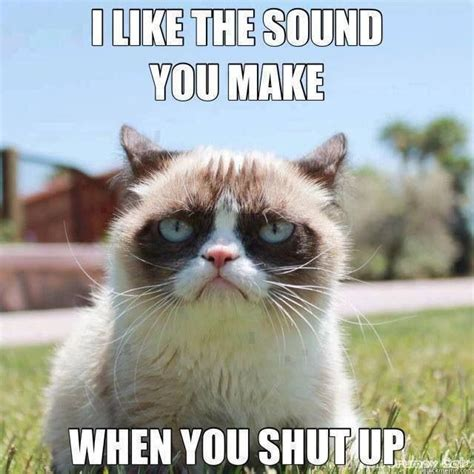 Create A Grumpy Cat Meme - grumpy cat i like the sound you make when you shut up