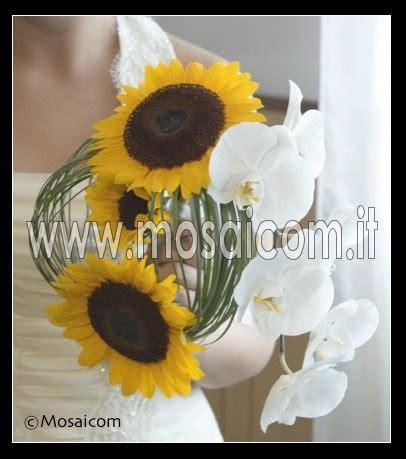 fiori di co immagini immagini di girasoli fiori