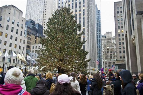 arbol navidad nueva york navidad en nueva york todo lo que debes saber