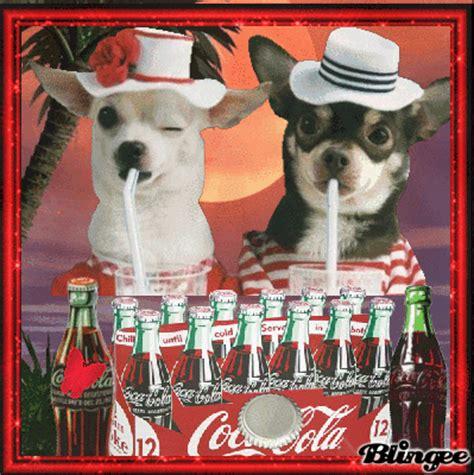 imagenes retro coca cola coca cola vintage fotograf 237 a 130199636 blingee com