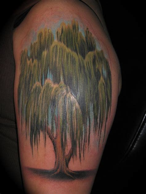 weeping willow tree tattoo best 25 willow tree tattoos ideas on weeping