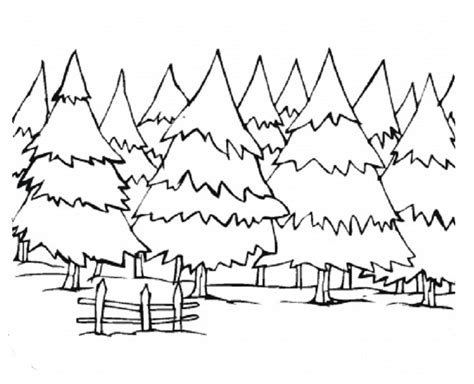 winter landscapes coloring sheets google search winter