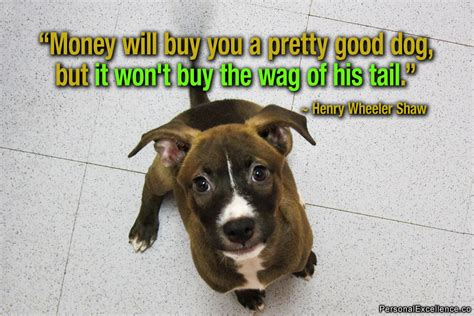 sayings about dogs inspirational quotes quotesgram