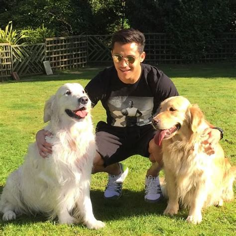 alexis sanchez dogs instagram arsenal s alexis sanchez soaks up the sunshine with his dogs