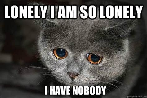 Sad Animal Memes - lonely memes image memes at relatably com