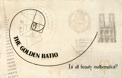 what is the golden section in art the golden ratio by crocusgirl on deviantart
