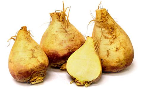 names of root vegetables roots vegetables names
