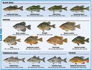 Fishing 17 00 nonresident 7 day freshwater fishing 30 00