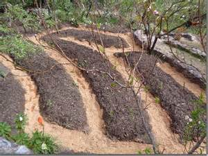 What Is Rock Dust For Gardens Contour Beds Peru The Permaculture Research Institute