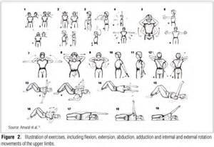 Net wp content uploads 2012 03 aop015fig02 gif back exercises women