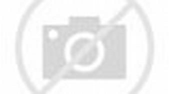 ... CSIS: Pendukung Prabowo Alihkan Pilihannya ke Jokowi - Tribunnews.com