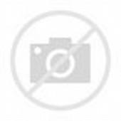 Korean Women Fashion Models