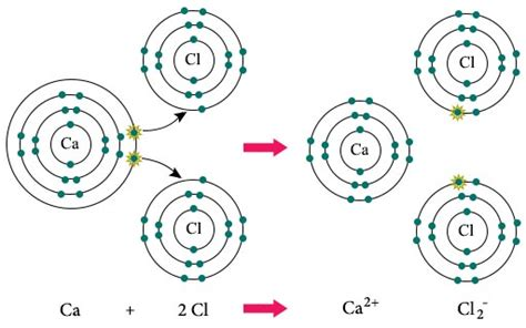 exle of ionic bond difference between ionic and covalent bonds chemistry tutorvista