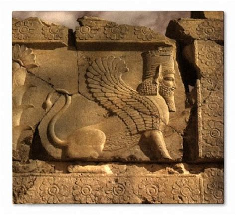 themes present in persepolis pinterest the world s catalog of ideas