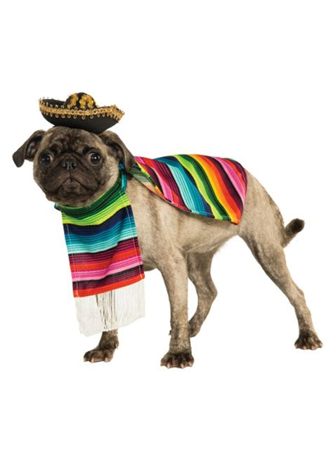 dogs in costumes mexican serape pet costume