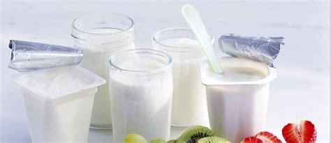 yogurt membuat gemuk atau kurus nutrisi jenis jenis yogurt makanan dari bahan susu