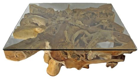 Tree Trunk Glass Coffee Table Teak Tree Trunk Glass Coffee Table Square Color Contemporary Coffee Tables By