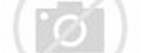 karate brasileiro o karate no brasil grão mestre pepi
