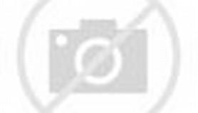 Ici Paint Color Catalogue