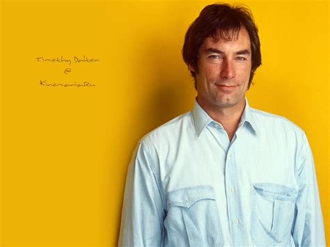 timothy dalton images timothy dalton hd wallpaper and