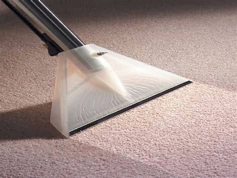 carpet cleaning and upholstery choosing the right carpet cleaning company carpet
