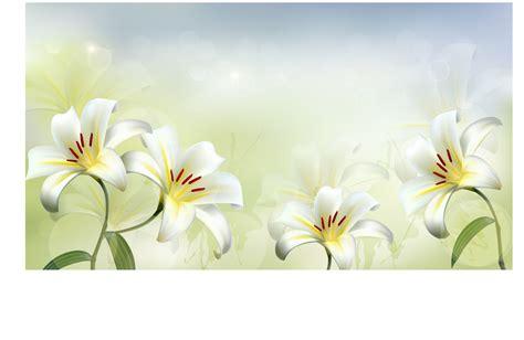 flower wallpaper vector free download beautiful white flower vector background 02 vector