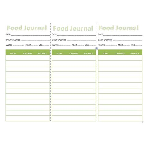 Best Photos Of Template Of Keeping Track Of What You Eat Food Diary Exle Keep Track Of Food Diary Template Excel
