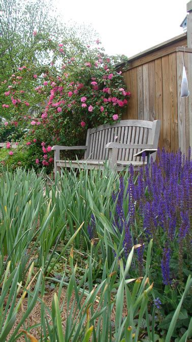 New Albany Gardens by New Albany Ms William Faulkner Garden New Albany Mississippi Photo Picture Image