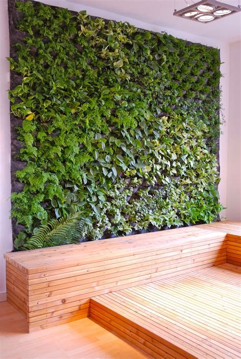 25 best ideas about plant wall on wall