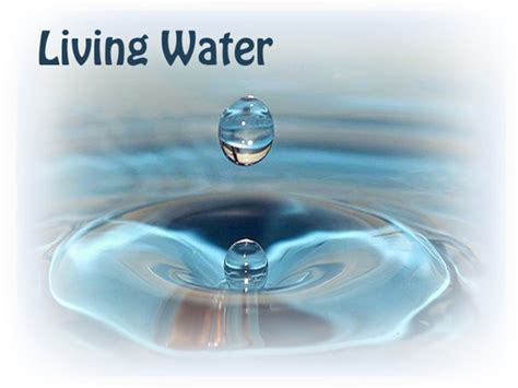 jesus is the living water woman at the well abide in jesus dailyjesus