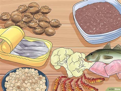 alimenti antistaminici naturali 3 modi per usare gli antistaminici naturali per trattare