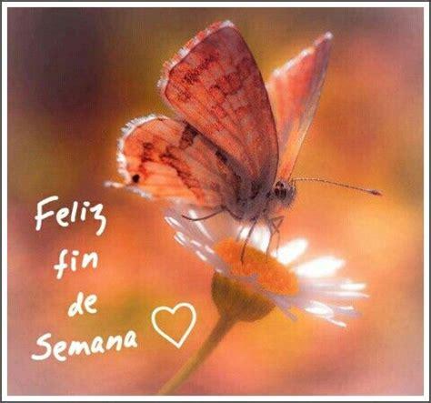 imagenes de mariposas buenos dias feliz fin de semana saludos de buenos d 237 as pinterest
