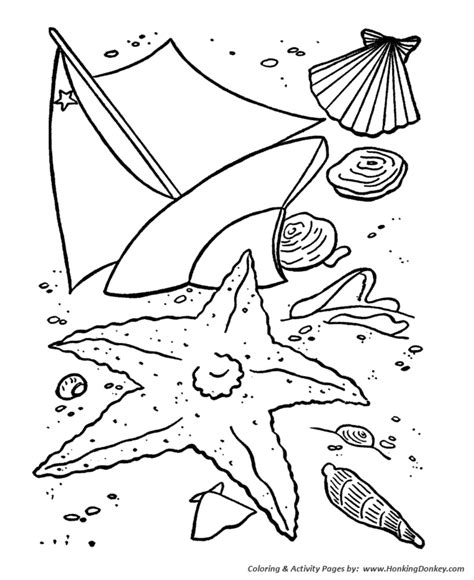 summer coloring summer sea shells coloring page sheets
