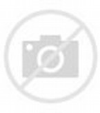 Image result for midland high bulldogs