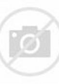 Black and White Siberian Tiger