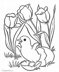 Easter Flower Coloring Pages  Page