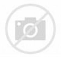 Gaun Pengantin Muslimah Modern