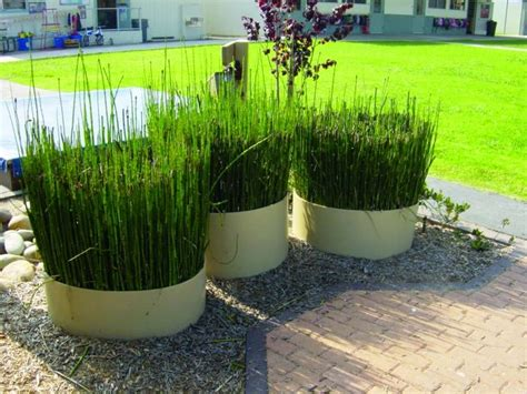 Bamboo Planter Ideas by Bamboo Planter Set Of 3 Playground Ideas