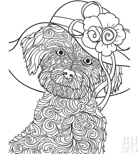 coloring pages of maltese puppies pics photos maltese cross coloring page sketch coloring page