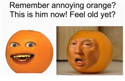 Free Sle Meme