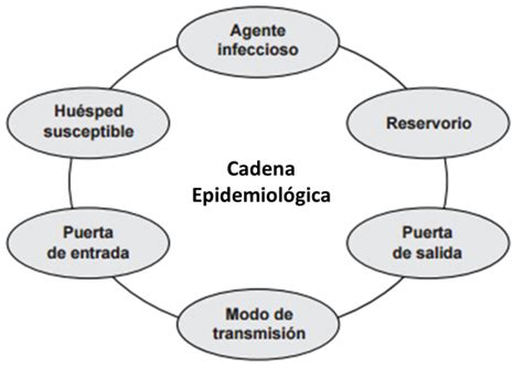 cadena epidemiologica vias de transmision cadena epidemiol 211 gica de las iaas blog de harrison sandoval
