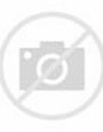 Funny Gorilla